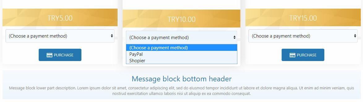 payment-metod-jpg.3494