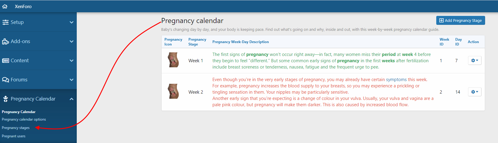 pregnancy-stages-png.3708